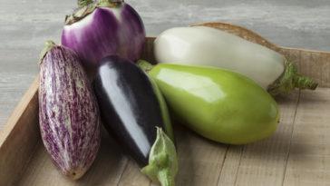 aubergine augerbines
